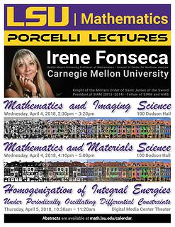 Irene Fonseca Porcelli Lectures 2018